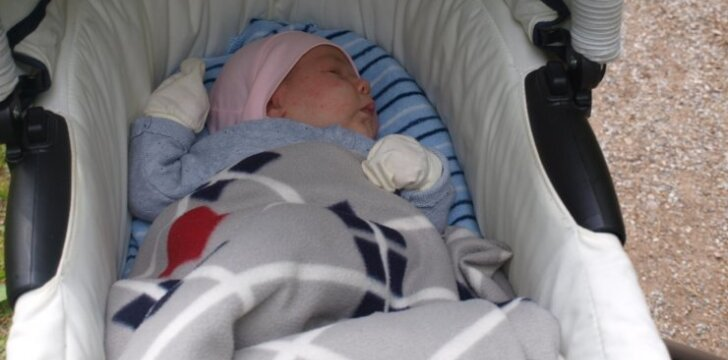 Norvegiška Ernestos meilės ir gimdymo istorija