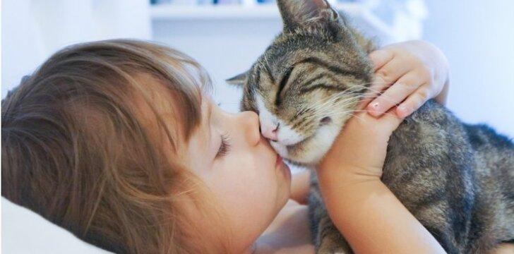 Ar katė yra vaikams draugiškas gyvūnas?