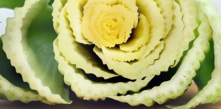 Paaiškėjo, kad tam tikrą saliero geną sujungus su rožės genomu, šis gali labai patobulinti rožės žiedlapių išsilaikymo trukmę ir kokybę.