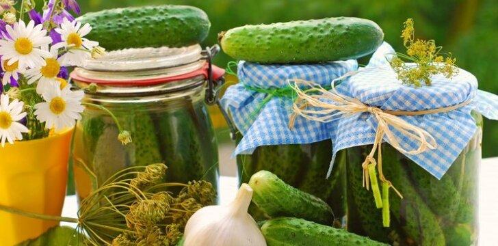 Konservuoti agurkai su juodųjų serbentų sultimis