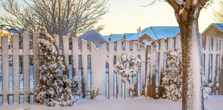 Kokius kiemo vartus pirkti, kad nereikėtų bijoti sniego?