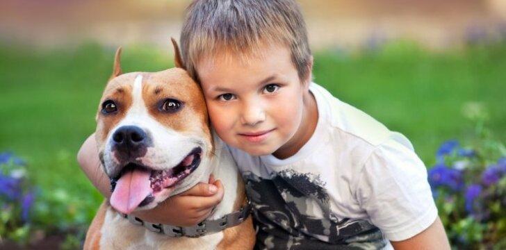 10 šunų veislių, kurios tinka šeimoms su vaikais