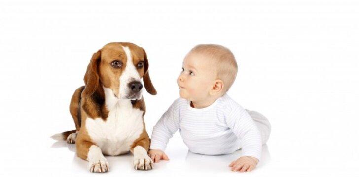 Kūdikis ir šuo