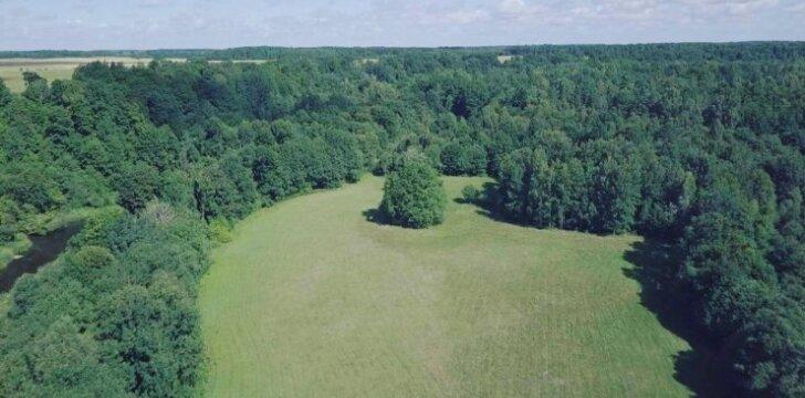 Minijos gamtinis rezervatas