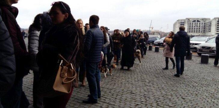 Šunų parodos prieigos