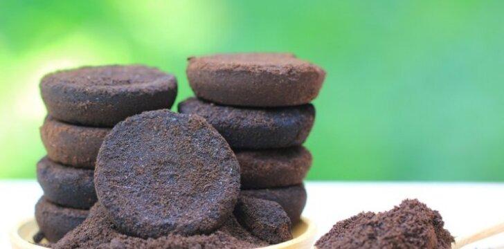 Išbandyti kavos tirščių panaudojimo būdai sode