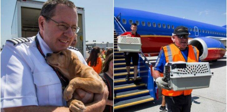 Oro linijų bendrovė padėjo gyvūnams