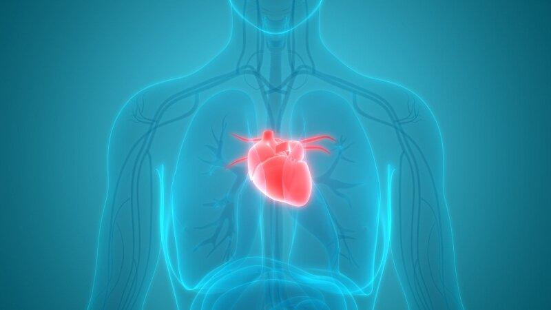 regėjimo organo liga su hipertenzija hipertenzija širdies gydymas liaudies gynimo priemonėmis