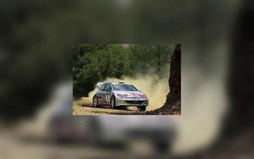 """""""Peugeot 206 WRC"""" automobilis"""