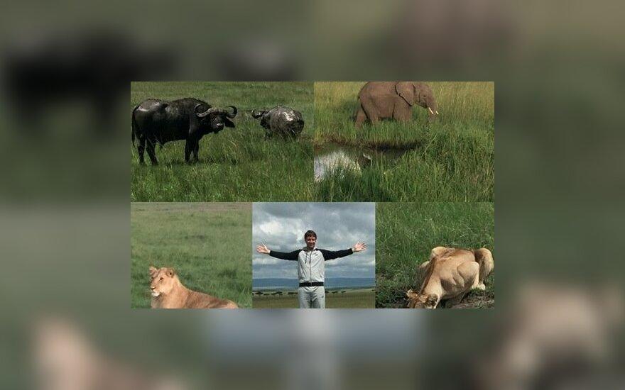 Ričardas Berankis Kenijoje ne tik ruošiasi sezonui, bet ir pažindinasi su Afrikos gamta