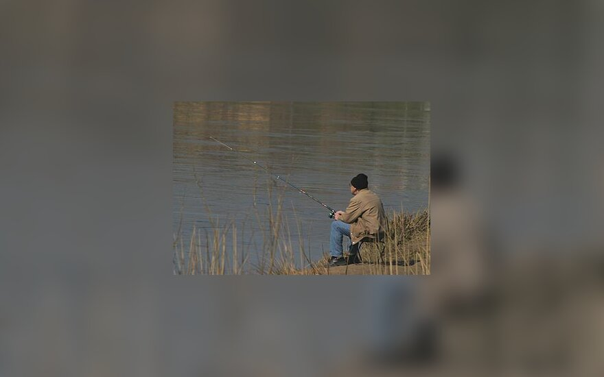 Žvejys, žvejyba