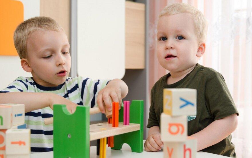 Lenkų atstovė Seime siūlo įteisinti mažus vaikų darželius namuose