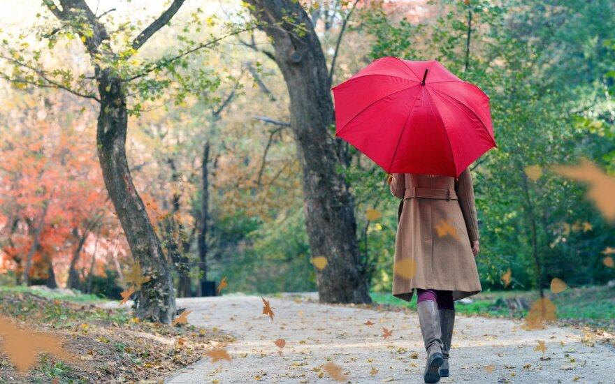 Kaip tinkamai prižiūrėti skėtį, kad jis ilgai atrodytų it naujas ir niekada neperšlaptų