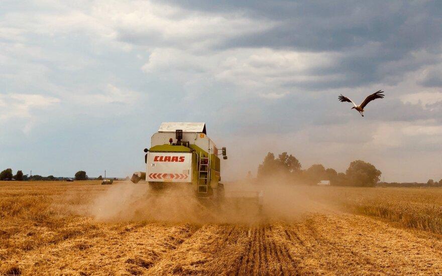 Viena didžiausių Lietuvos agro įmonių žengia į išmaniąją žemdirbystę