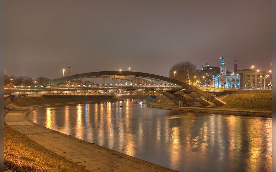 Mindaugo tiltas Vilniuje, Neris