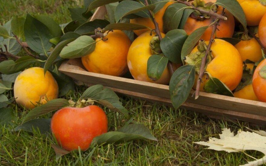 Puikus dietinis ląstelienos šaltinis: antioksidantų gausus vaisius