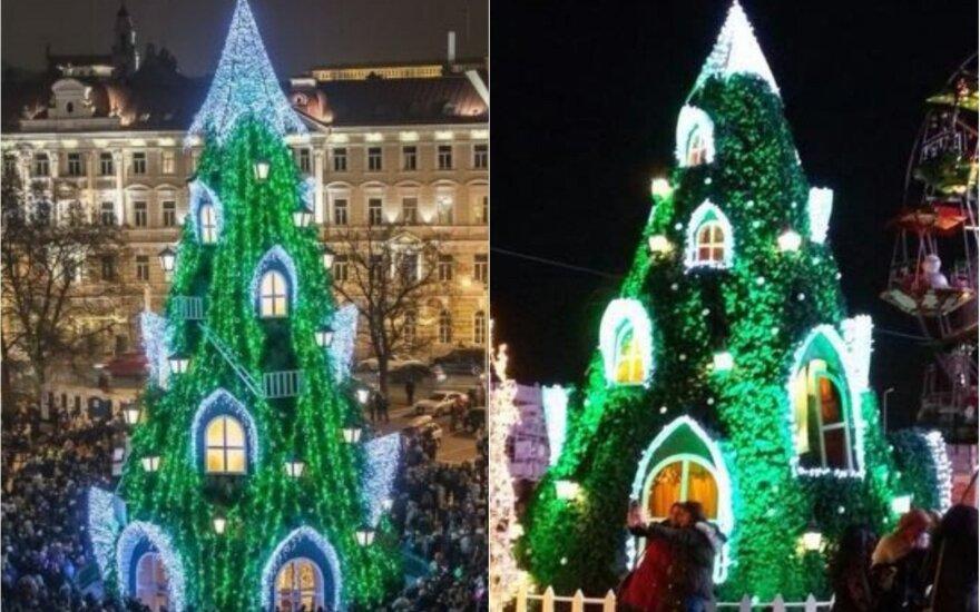 2015-ųjų Vilniaus ir 2017-ųjų Naujojo Kairo eglės