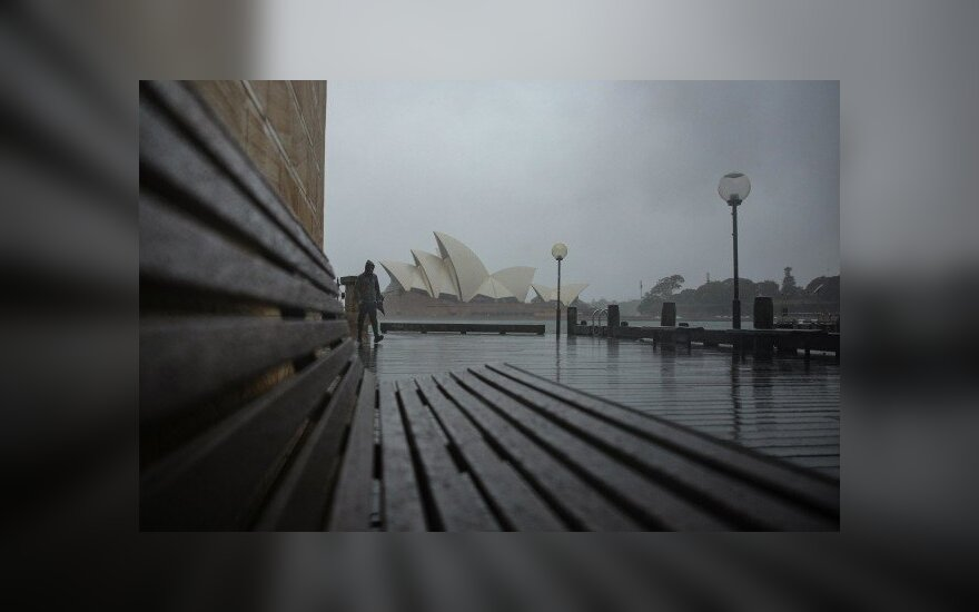 Liūtis plauna Sidnėjų