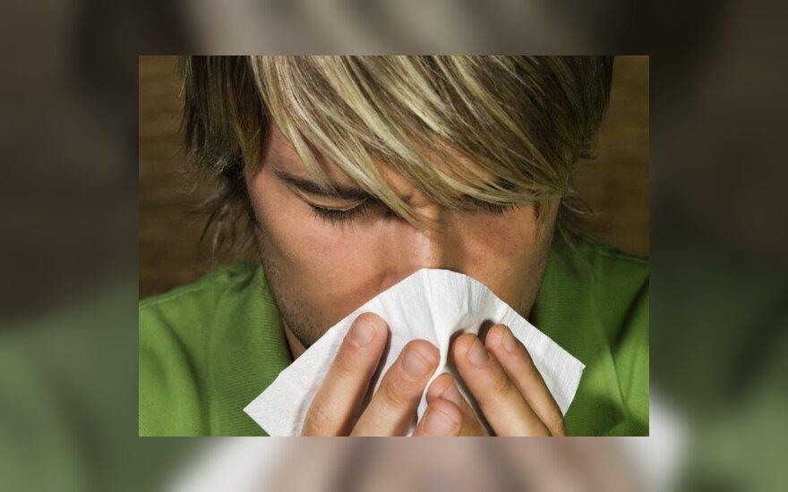 Medikai teigia, kad alergija stiprina imunitetą ir apsaugo nuo vėžio