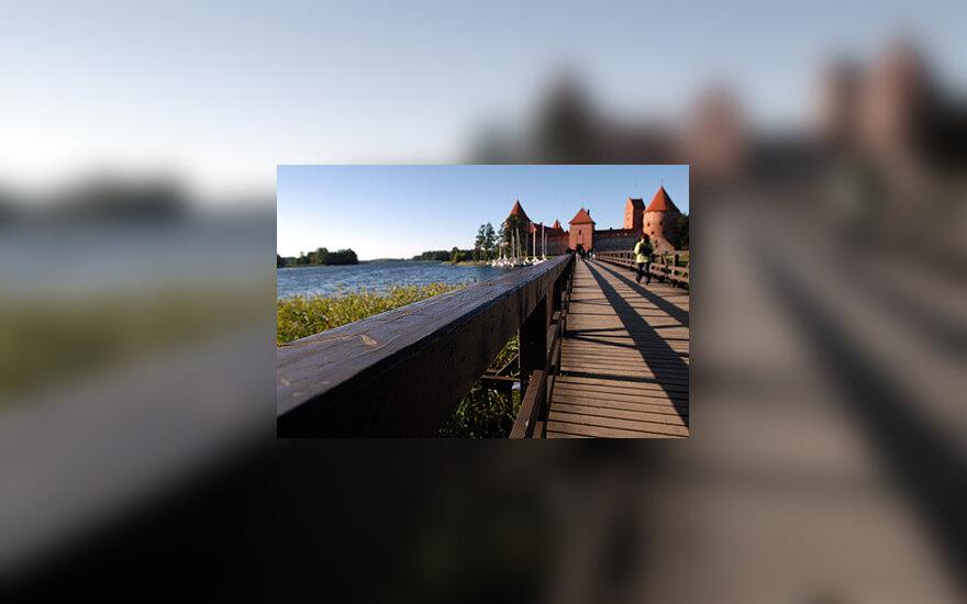 Trakai, Trakų pilis