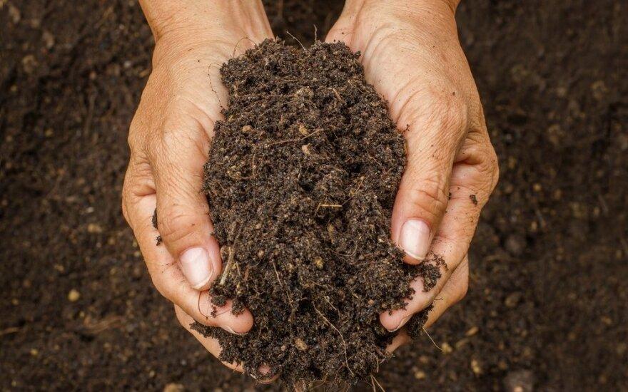 Kaip keičiasi ūkininkų požiūris į žemę