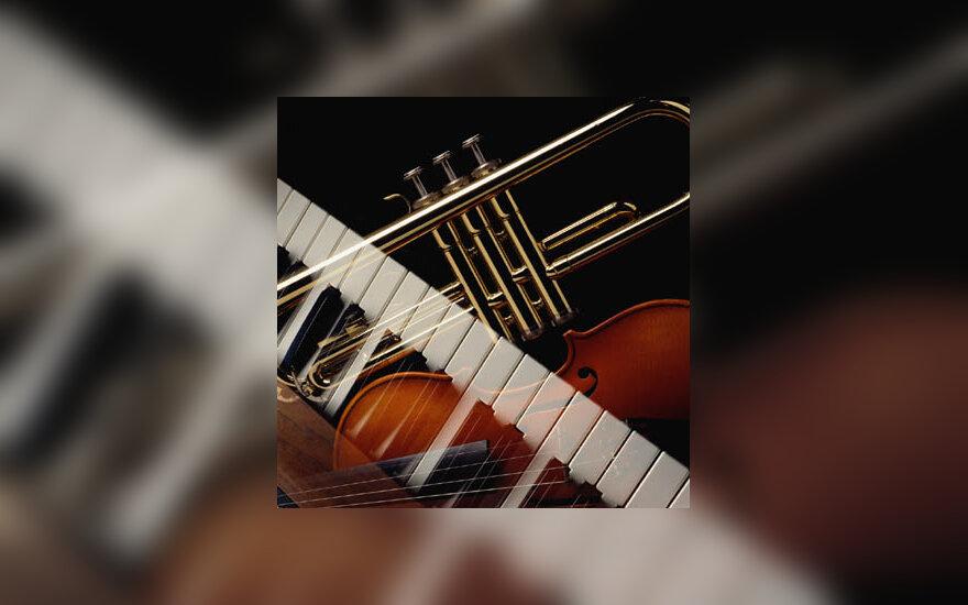 muzika, instrumentai, koncertas
