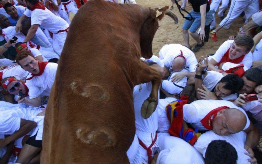 Tradicinis bulių bėgimas Pamplonoje