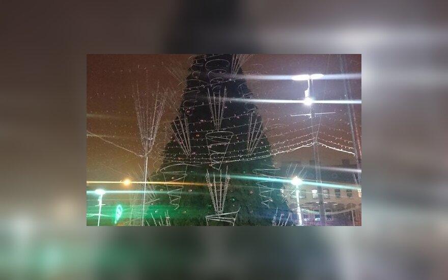Užgeso Panevėžio Kalėdų eglė