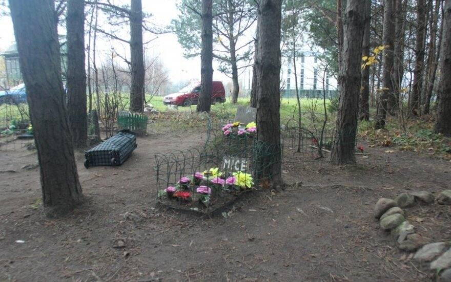 Nelegalios gyvūnų kapinaitės miške šalia televizijos bokšto
