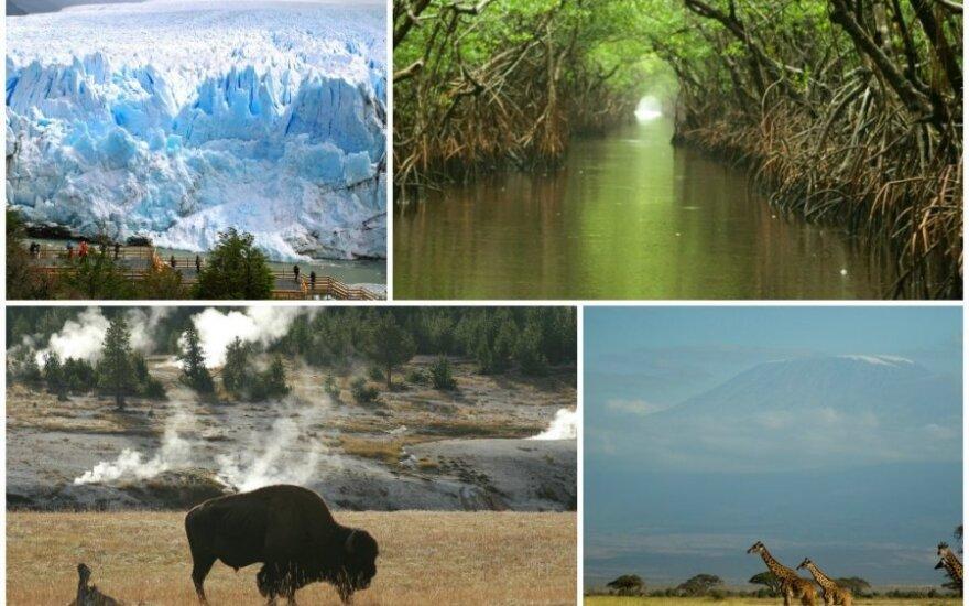 Gražiausi ir seniausi pasaulio nacionaliniai parkai (CC--BY 2.0 / Dimitry B., Jalil Arfaoui, Chauncey Davis, US Geological Survey nuotr.)