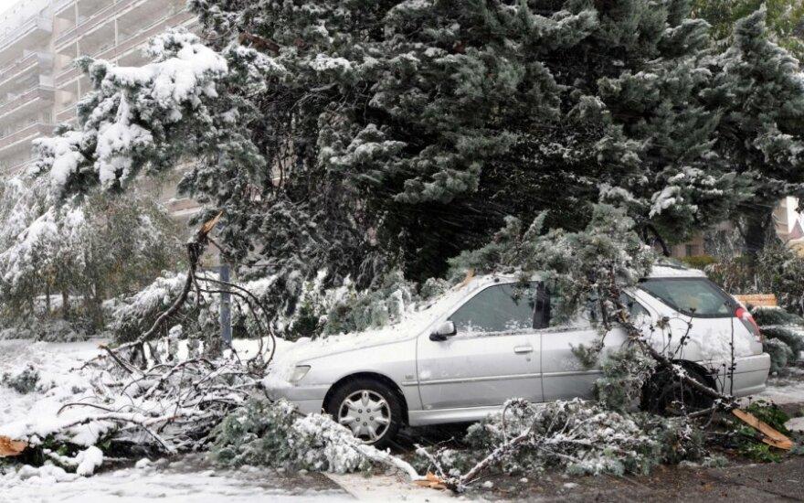 Prancūzijoje – gausus sniegas ir stiprus vėjas