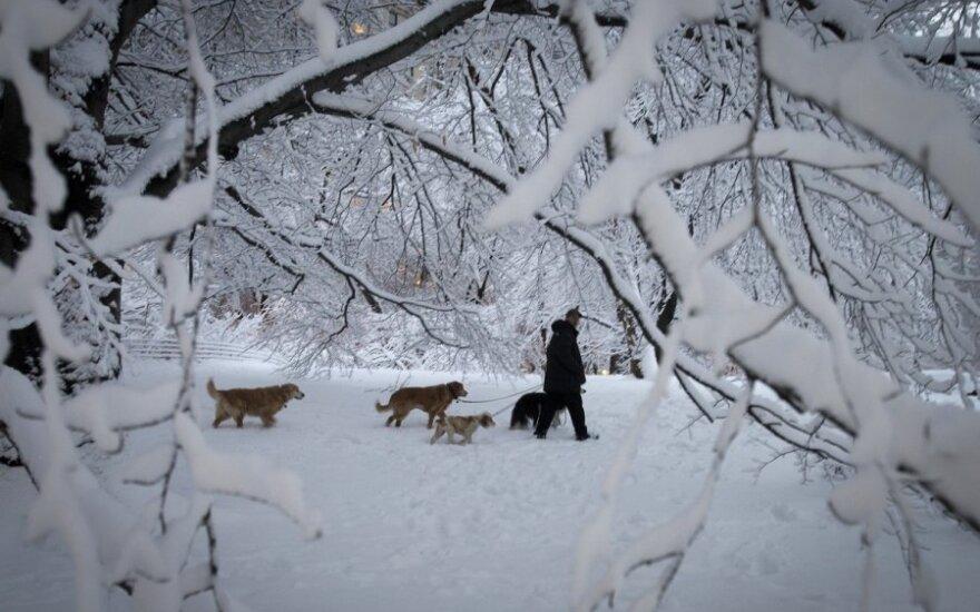 Kokią žiemą žada neįtikėtinai šiltas ruduo