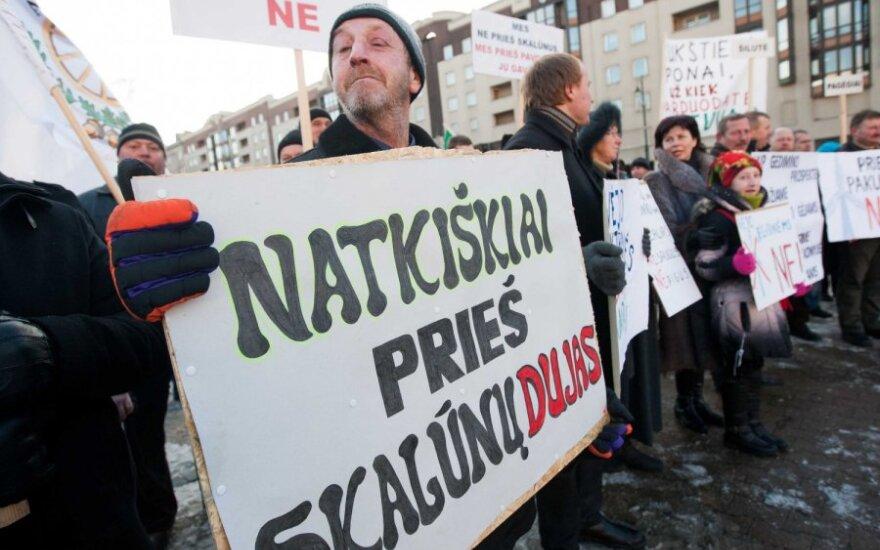 """K.Jovaišas. Prie Seimo piketavę prieš skalūnus - """"Gazprom"""" ruporas"""