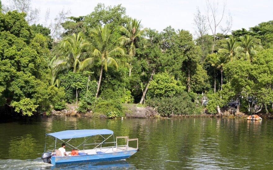 Ši sala tokia pavojinga, kad žmonėms uždrausta ten kelti koją