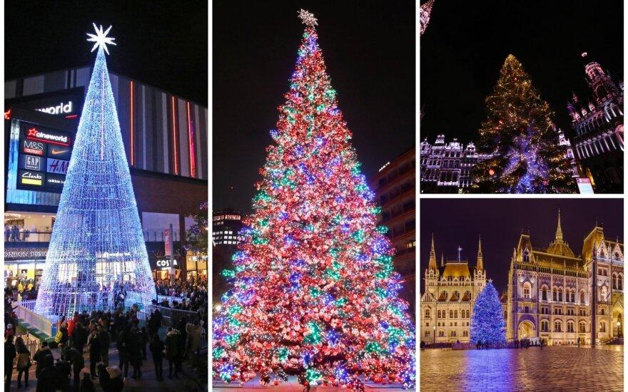 Kalėdų eglės Europos sostinėse