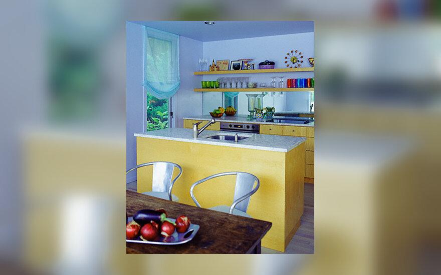 Virtuvė, interjeras