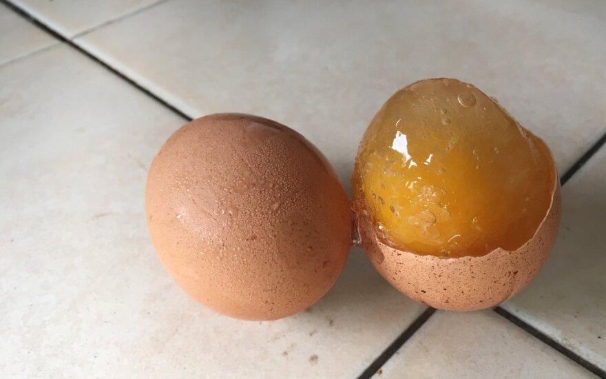 Šaldyti kiaušiniai