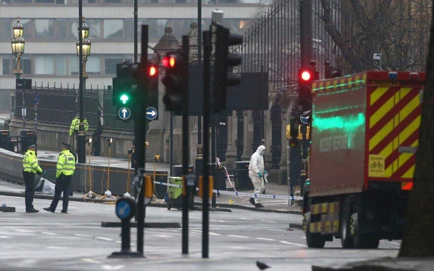 Mirė per teroro ataką Londone į upę įkritusi rumunė