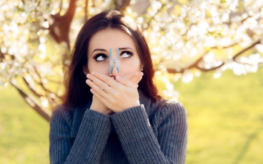Alergija žiedadulkėms mieste pavojingesnė