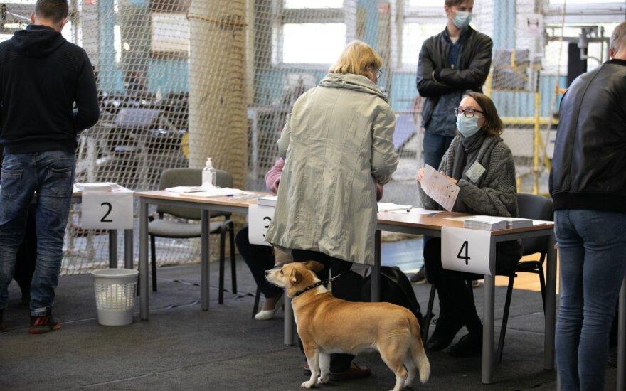 2020-ųjų Seimo rinkimai – pagrindiniai faktai