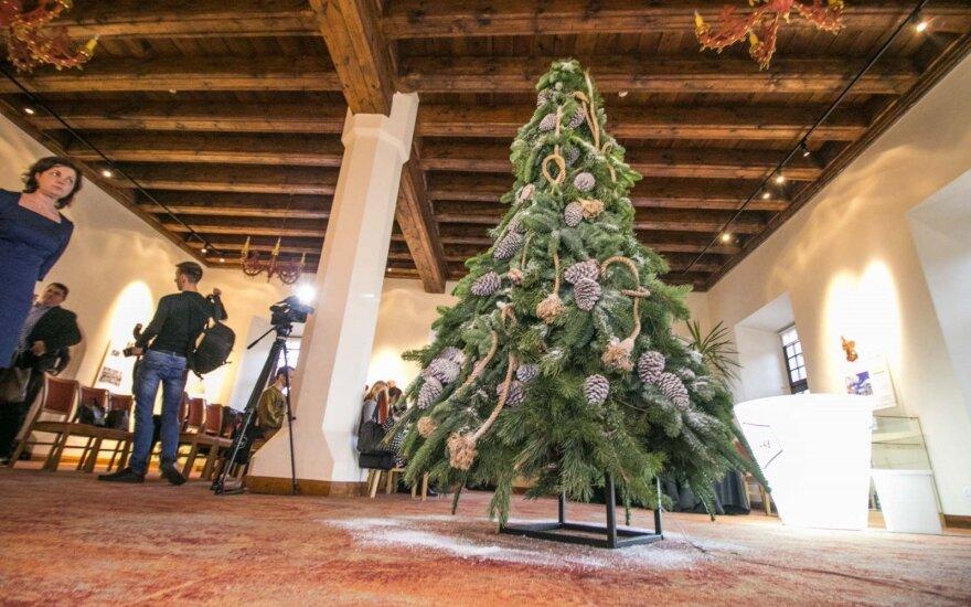 Šv. Kalėdų eglę kauniečiai apšvies naudodami kavos tirščius