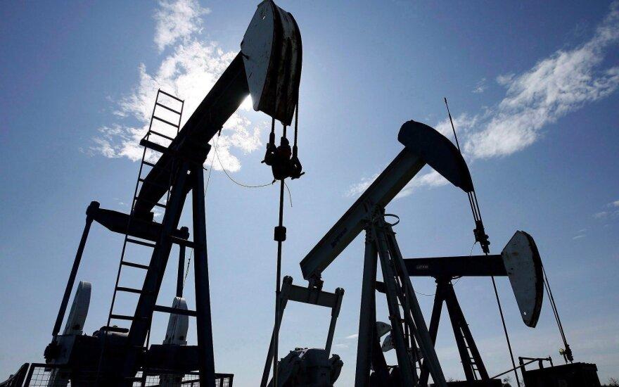 Naftos kainos stiebėsi į viršų