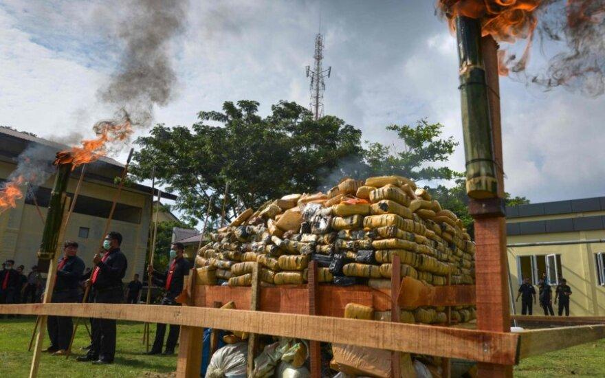 Indonezijoje sudegintas kalnas marihuanos