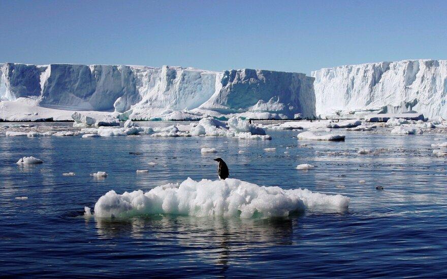 Vakarų Antarktidoje mokslininkai pastebėjo pavojingus pokyčius