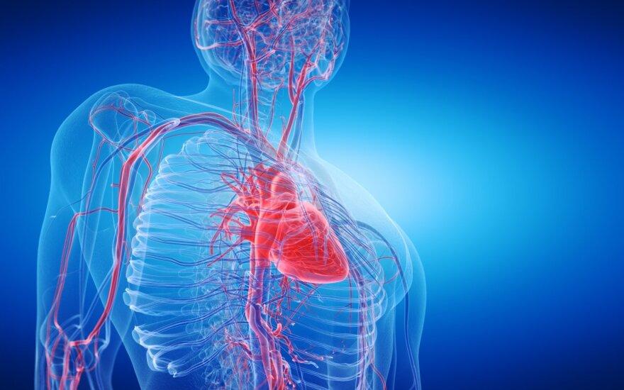 Jei manote, kad stiprinti sveikatą per vėlu, smarkiai klystate: pasakė, kaip padėti savo širdžiai