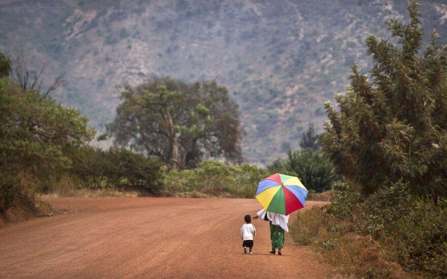 """Megrame"" Ruandoje valdys 1,4 tūkst. hektaro miško"