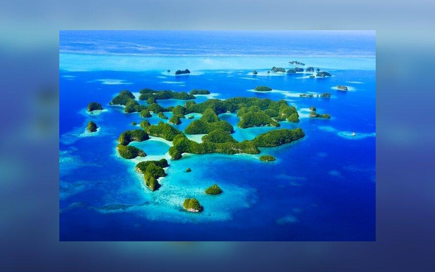 Rock salos, Palau