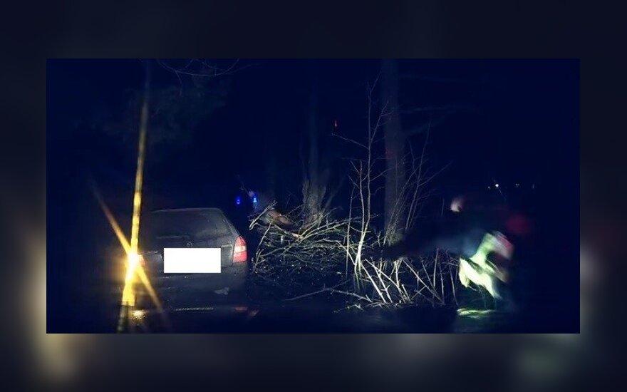 Policininkai pasidalijo filmuotais įspūdingų gaudynių vaizdai: bėglys po šūvio rėžėsi į medį