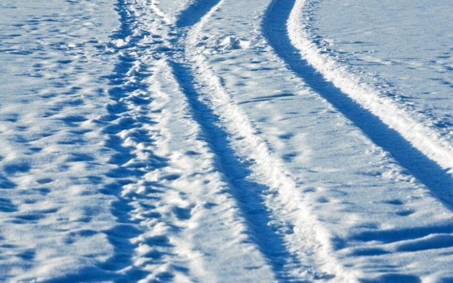 Vėžės ant sniego