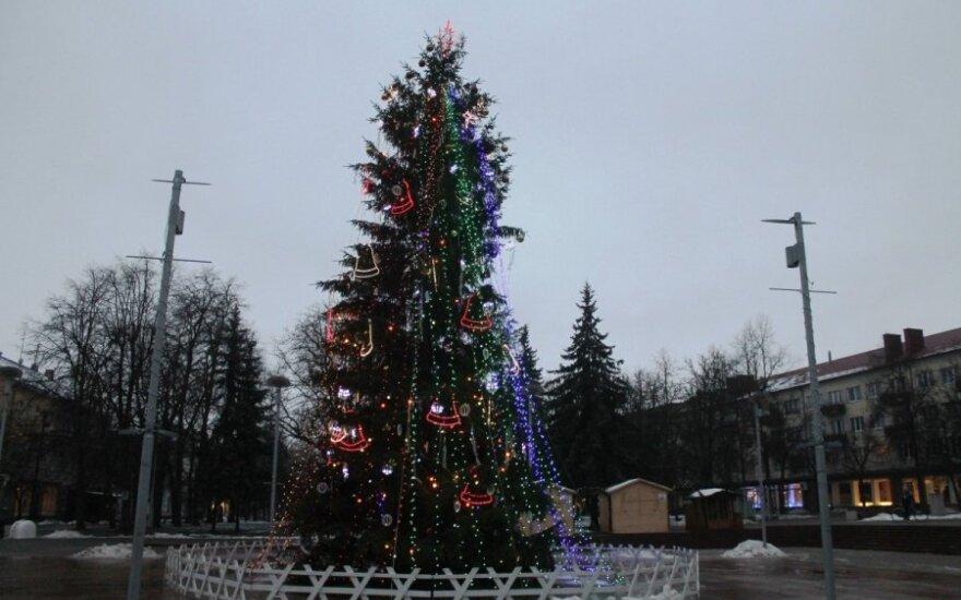 Labiausiai šiemet visus sudomino Panevėžio kalėdų eglė